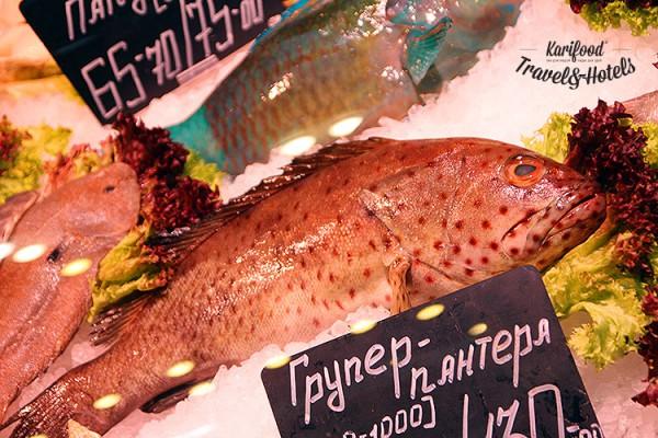 fish_house52