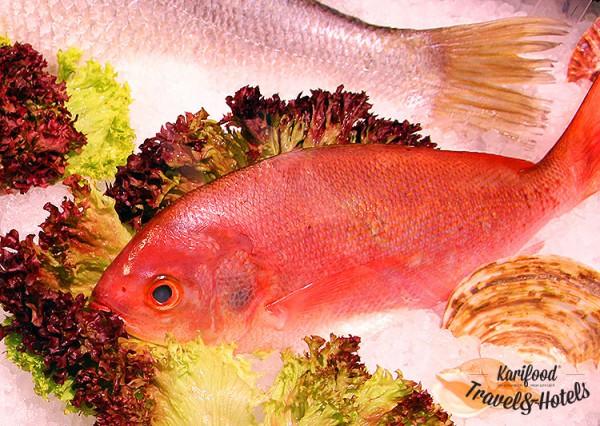 fish_house55