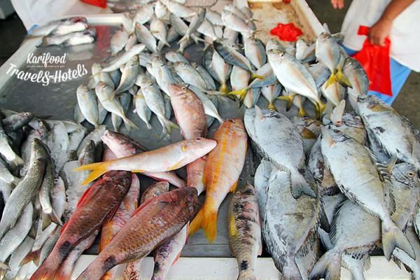 fish_market12