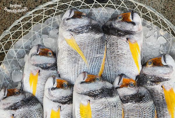 fish_market7