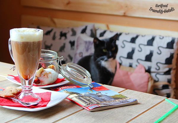catcafe30